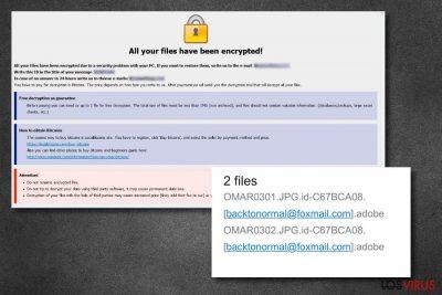 Archivos del virus .Adobe