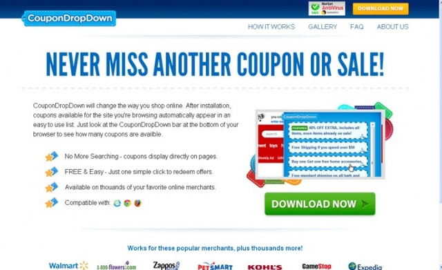 CouponDropDown foto