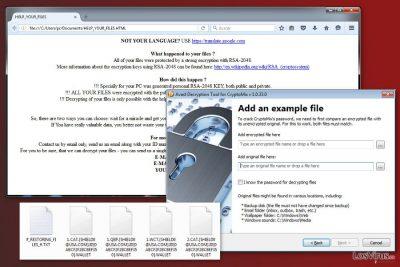 Una imagen del virus CryptoMix