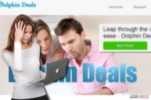 Los anuncios de Dolphin Deals