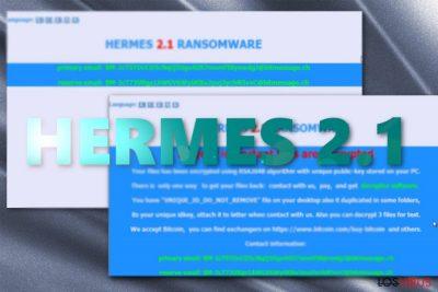La imagen que muestra las notas de pago de Hermes 2.1