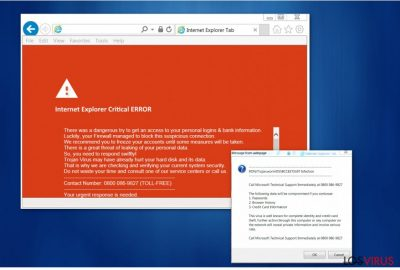 "Virus ""Internet Explorer Critical ERROR"""