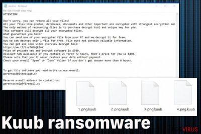 Ransomware Kuub