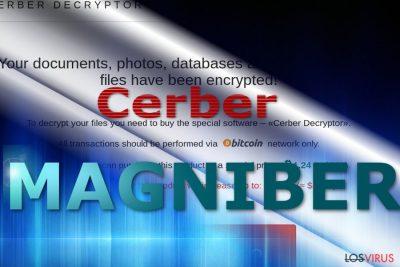 Sitio de pago del virus Magniber