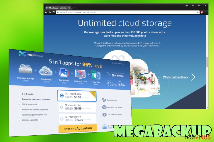 PUP MegaBackup