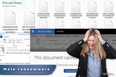 La imagen del virus ransomware Mole
