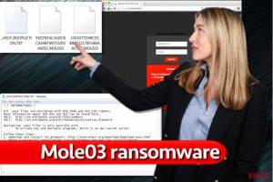 Virus ransomware Mole03