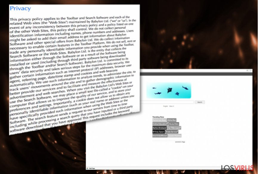 Virus Opti-Page.com