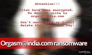 El virus ransomware Orgasm@india.com