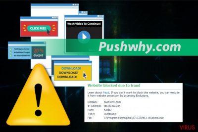 Virus Pushwhy.com