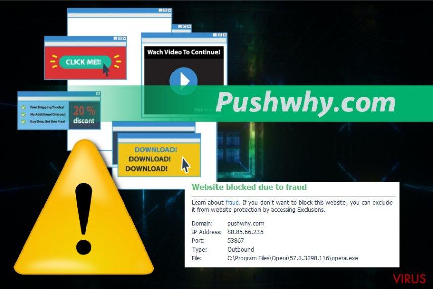 Pushwhy.com