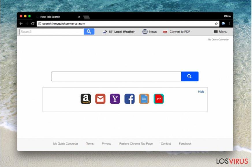 Una imagen del hacker Search.hmyquickconverter.com