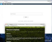 search-opinteks-com-virus_es.jpg