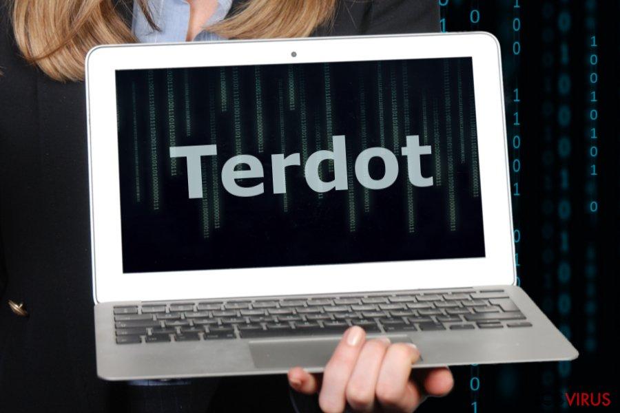 La imagen del malware Terdot