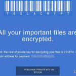 TeslaCrypt 2.0 foto