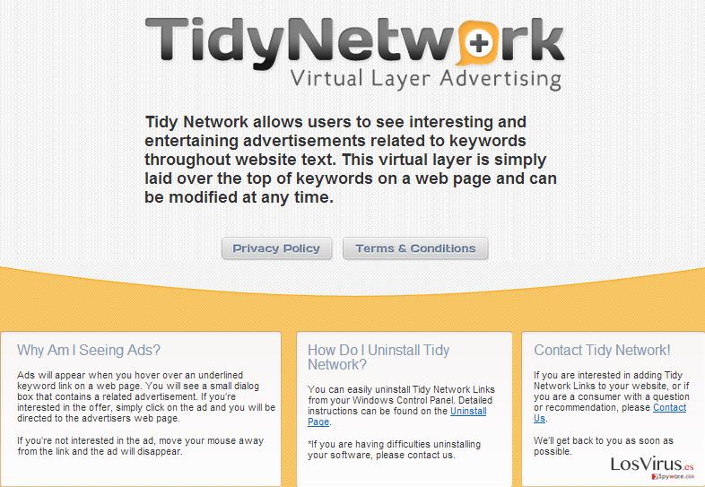 TidyNetwork.com foto
