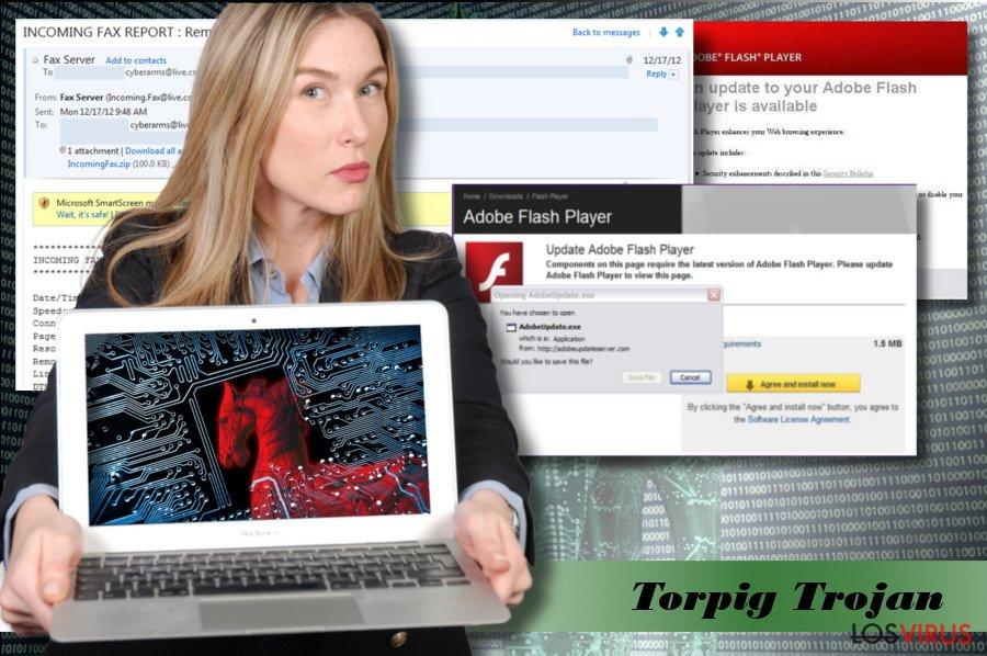 Una imagen del virus Torpig