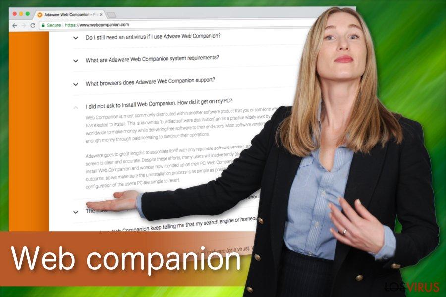 Ilustración de Web companion