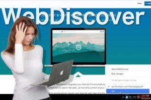 El navegador WebDiscover