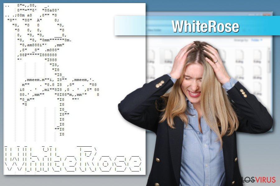 Ataque del ransomware WhiteRose