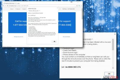 Imagen de la estafa Windows Warning Alert