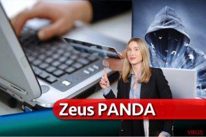 Virus Zeus Panda